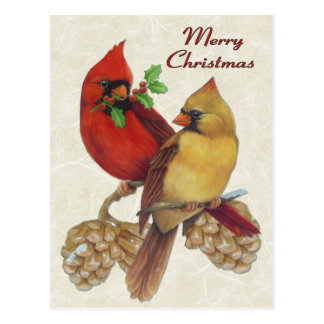 Winter Cardinals Postcard