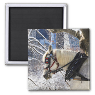 Winter Carriage Horse 2 Inch Square Magnet