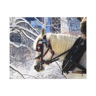 Winter Carriage Horse Canvas Print