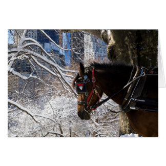 Winter Carriage Horse Card
