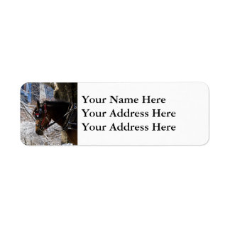 Winter Carriage Horse Label