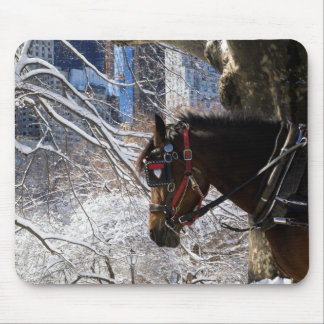 Winter Carriage Horse Mouse Pad