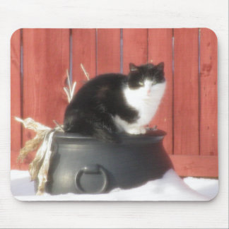 Winter Cat Mouse Pad
