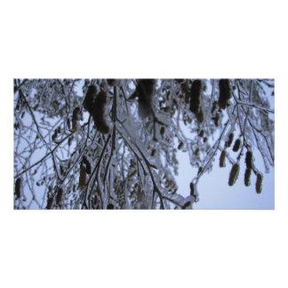 Winter Catapillars Card