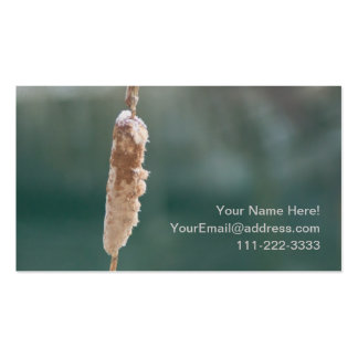 Winter Cattail Closeup Double-Sided Standard Business Cards (Pack Of 100)