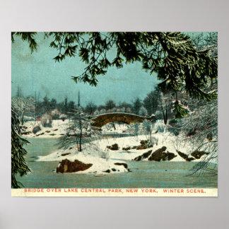Winter, Cemtral Park, New York City Vintage Poster