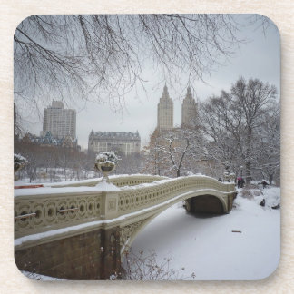 Winter - Central Park - New York City Beverage Coaster