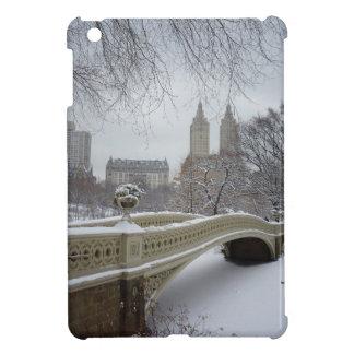 Winter - Central Park - New York City iPad Mini Cover