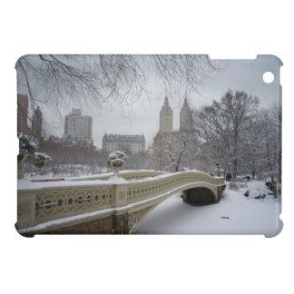 Winter - Central Park - New York City iPad Mini Case