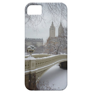 Winter - Central Park - New York City iPhone SE/5/5s Case