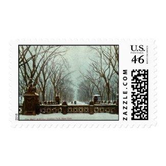Winter Central Park NY Vintage c1910 stamp