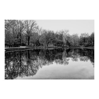 Winter Central Park, NYC Landscape Poster
