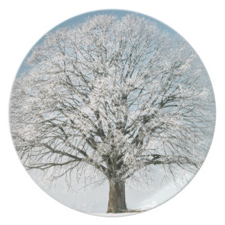 Winter Changeseason Sommer Linde Party Plate