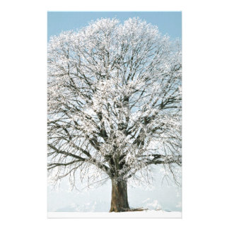 Winter Changeseason Sommer Linde Customized Stationery