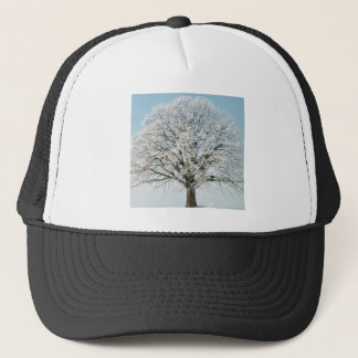 Winter Changeseason Sommer Linde Trucker Hat