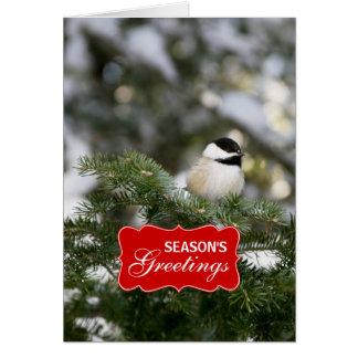 Winter Chickadee Holiday Greeting Card