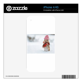 Winter Chipmunk Knit Hat Red Scarf Bundled Up iPhone 4S Decal