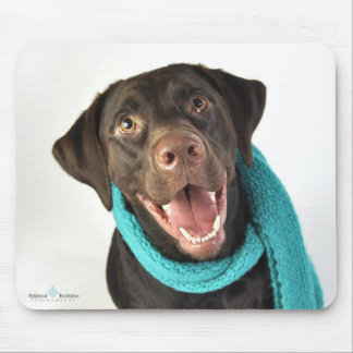 Winter Chocolate Lab Mouse Pads