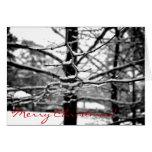 Winter [Christmas Card]