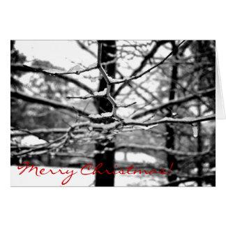 Winter [Christmas Card] Greeting Card