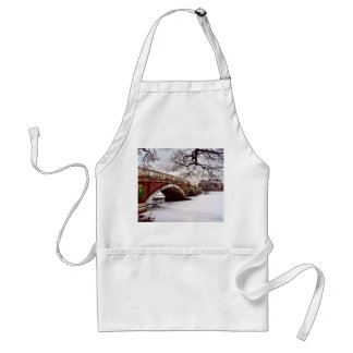 Winter Christmas on the Charles River Boston Aprons