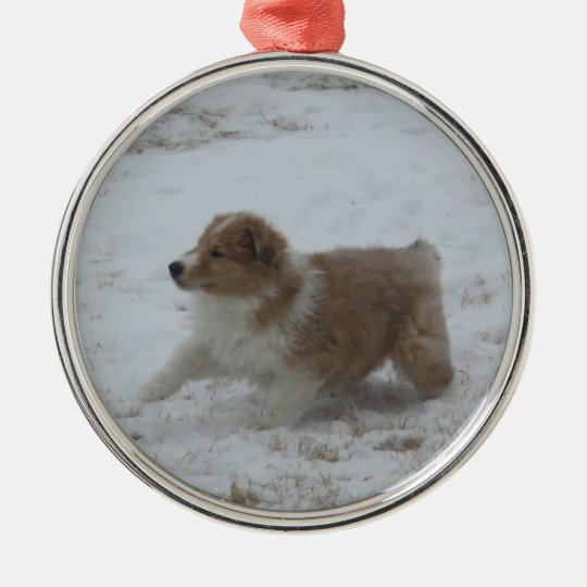 Winter Collie Ornament