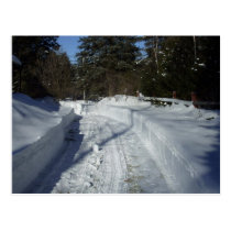 Winter Country Road Postcard
