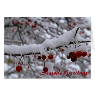 Winter Crabapples 2 Card