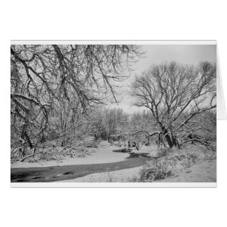 Winter Creek in Black and White Card