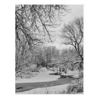 Winter Creek in Black and White Postcard