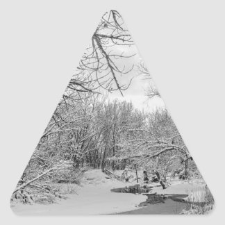 Winter Creek in Black and White Triangle Sticker