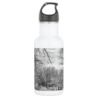 Winter Creek in Black and White Water Bottle