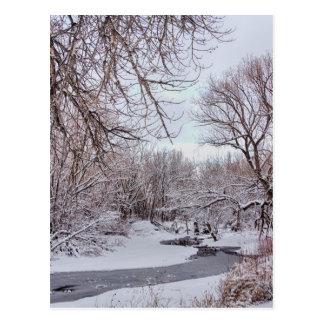 Winter Creek Postcard