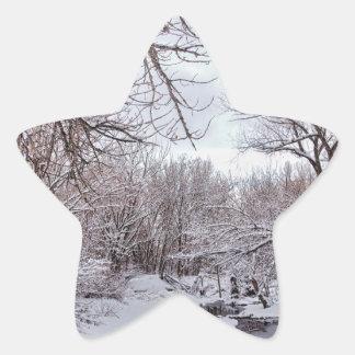 Winter Creek Star Sticker