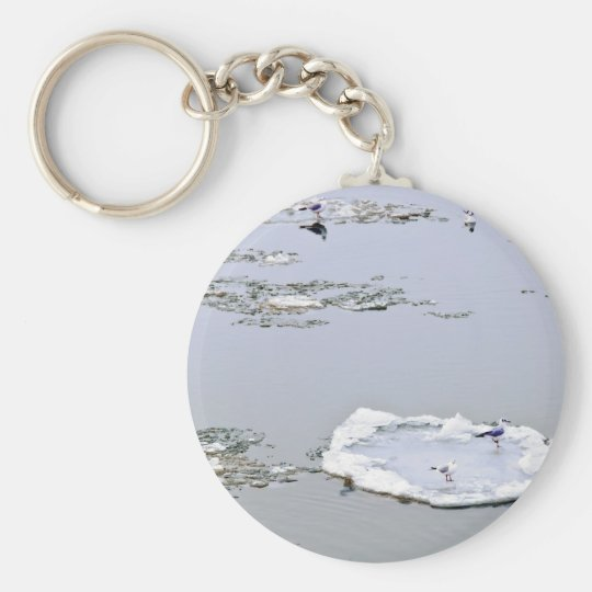 winter - danube river in frosty day keychain