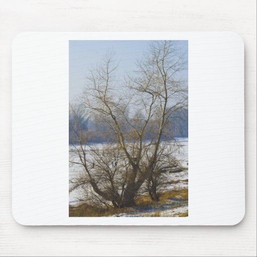 winter - danube river in frosty day mouse pads