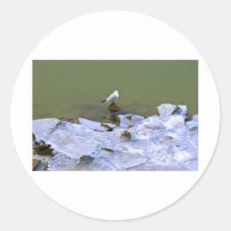 winter - danube river in frosty day round sticker