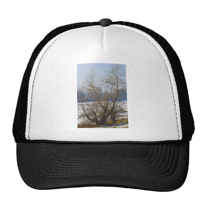winter - danube river in frosty day trucker hat