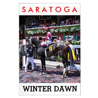 """""""Winter Dawn"""" wins her first start Dry Erase Board"""