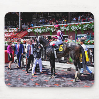 """""""Winter Dawn"""" wins her first start Mouse Pad"""