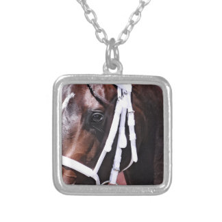 """""""Winter Dawn"""" wins her first start Silver Plated Necklace"""