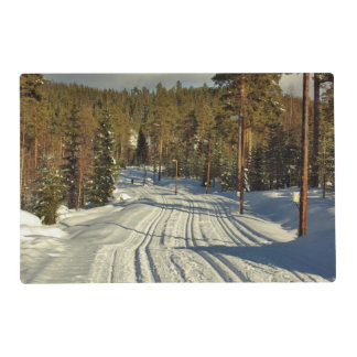 Winter day in Sweden Placemat
