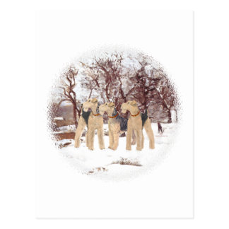 Winter Day Postcard