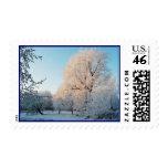 Winter Elegance Stamps