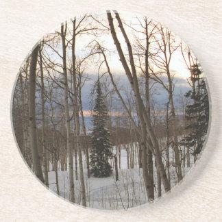 Winter Evening Coasters