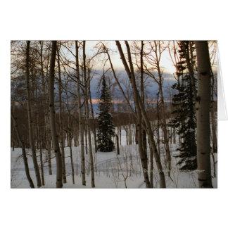 Winter Evening Greeting Card