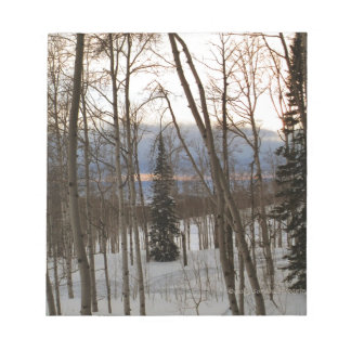 Winter Evening Memo Pads