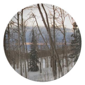 Winter Evening Plates