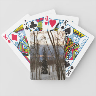 Winter Evening Playing Cards