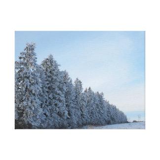 winter evergreen art canvas print